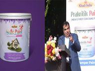 गायीच्या शेणापासून तयार केला पर्यावरणपूरक वेदिक पेंट, देशातील पहिलाच यशस्वी प्रयोग नागपूर,Nagpur - Divya Marathi