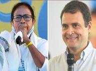 54 दिवसांमध्ये केवळ एकदाच प्रचार करण्यासाठी पोहोचले राहुल गांधी, म्हणाले - दुसऱ्या नेत्यांनीही या सभांच्या परिणामांचा अंदाज लावावा|निवडणूक 2021,Election 2021 - Divya Marathi