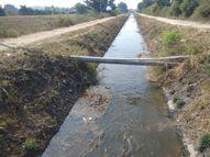 માઝુમ ડેમમાંથી નહેરની સફાઈ કર્યા વગર પાણી છોડાતાં છેવાડા સુધી ન પહોંચતાં રોષ|મોડાસા,Modasa - Gujarati News