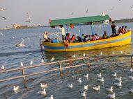 પક્ષીઓને નથી નડતી સરહદો, ત્રિવેણીએ પહોંચ્યા હજારો વિદેશી પક્ષી|વેરાવળ,Veraval - Gujarati News