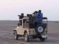 કોરોનાએ રણ પ્રવાસની કમર તોડી, રણમાં ઘૂડખર-પક્ષીઓ વધ્યા પણ પ્રવાસીઓમાં ઘટાડો નોંધાયો|પાટડી,Patdi - Gujarati News
