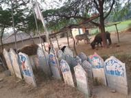 આદિવાસી સમાજ દ્વારા ગામમાં મૂકેલ સીરાની પૂજા કરાઈ સંતરામપુર,Santrampur - Gujarati News