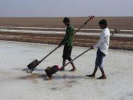 ઉત્તર પૂર્વી ઠંડા પવન ફૂંકાતા ખારાઘોડા રણમાં ઠંડીનો પારો 14 ડિગ્રી પહોંચ્યો|પાટડી,Patdi - Gujarati News
