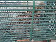 માનવ ભક્ષી દીપડાની જેલ ફૂલ, 35 દિપડાને જામનગર મોકલાશે|જુનાગઢ,Junagadh - Gujarati News
