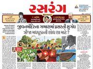 જીવનમંદિરના ગભારામાં પ્રસરતી સુગંધ ત્રીજા મધપૂડાની શોધ શા માટે ?, વાંચો રસરંગના તમામ આર્ટિકલો એક ક્લિક પર|રસરંગ,Rasrang - Gujarati News