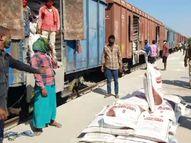 હિંમતનગરમાં 1300 મેટ્રિક ટન ખાતરનો જથ્થો આવી પહોંચ્યો, બંને જિલ્લાના ખેડૂતોને રવિ સીઝન માટે ફાયદો થશે|હિંમતનગર,Himatnagar - Gujarati News