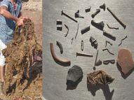 વઢવાણના આશ્રમમાં રહેતી ગાયના પેટમાંથી 53 કિલો પ્લાસ્ટિક નીકળ્યું, 11 લોખંડની ખીલી, 6 પિન પણ નીકળી|સુરેન્દ્રનગર,Surendranagar - Gujarati News