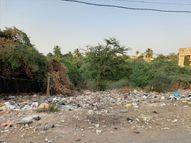 ઘેલખડીમાં કચરાનો ટેમ્પો ન આવતા લોકોએ જાહેર માર્ગ પર કચરો ફેંક્યો|નવસારી,Navsari - Gujarati News