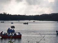 વાદળછાયું વાતાવરણ સાથે શીતલહેર|આહવા,Ahwa - Gujarati News