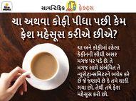 ચા-કોફીમાંથી મળતું કેફીન મગજને એક્ટિવ તો કરે છે પરંતુ બ્લડ પ્રેશર પણ વધારે છે, જાણો તેના ફાયદા-નુકસાન|હેલ્થ,Health - Divya Bhaskar