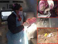 મગુના-લાલજીનગરમાં 9 ડિગ્રી કડકડતી ઠંડીમાં કચરામાં ફેંકેલું તાજુ જન્મેલું બાળક મળી આવ્યું|મહેસાણા,Mehsana - Divya Bhaskar