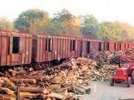 તે વખતે મૃતદેહોની અંતિમક્રિયા માટે લાકડાં પણ ન હતાં, આજે રેવન્યુ ટેક્સમાં ટોચ પર પહોંચ્યું કચ્છ|ભુજ,Bhuj - Divya Bhaskar