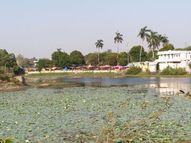 છોટાઉદેપુર નગરમાં આવેલા કુસુમસાગર તળાવમાં ગંદકીનું સામ્રાજ્ય|છોટા ઉદેપુર,Chhota Udaipur - Divya Bhaskar