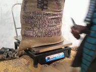 તલોદમાં ટેકાના ભાવે ઘઉંની ખરીદીમાં તોલમાપમાં ઘટ હોબાળા બાદ ખેડૂતને 100 કિ.ગ્રા. ઘઉં પરત આપ્યા|હિંમતનગર,Himatnagar - Divya Bhaskar