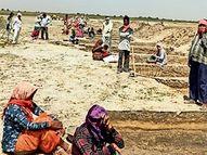 જિલ્લામાં સુજલામ સુફલામ જળ અભિયાનના 62 કામમાં 6700 જેટલા શ્રમિકો રોજગારી મેળવી રહ્યા છે પાટણ,Patan - Divya Bhaskar