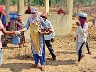 તાપી જિલ્લા આયુર્વેદ વિભાગ દ્વારા 6873 લોકોને નિ:શુલ્ક ઉકાળા વિતરણ|વ્યારા,Vyara - Divya Bhaskar