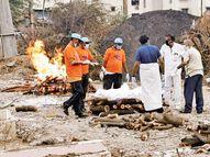 કોરોનાથી માણસો સહિત જંગલો પણ મર્યાં! રાજ્યમાં રોજ સરેરાશ 600ના અંતિમસંસ્કાર, 15 દિવસમાં જ 14 લાખ કિલો લાકડાંનો વપરાશ|સુરત,Surat - Divya Bhaskar