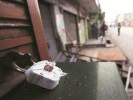 કોરોના લૉકડાઉન છતાં ખુલેલાં સલૂન, હાર્ડવેર અને કપડાંની પાંચ દુકાનો સીલ|મહેસાણા,Mehsana - Divya Bhaskar