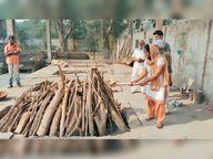 10 हजार बेसहारा का बन चुके सहारा, शेल्टर होम बनाने के लिए बेचेंगे मकान सोनीपत,Sonipat - Dainik Bhaskar