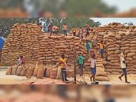 मिलों में सरकारी धान के स्टाक की होगी जांच, गड़बड़ी मिली तो कार्रवाई|पत्थलगांव,Pathalgaon - Dainik Bhaskar