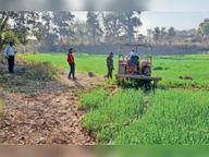 प्रशासन ने पांच लाख कीमत की सरकारी भूमि पर ट्रैक्टर चलाकर अतिक्रमण हटाया|छतरपुर (मध्य प्रदेश),Chhatarpur (MP) - Dainik Bhaskar