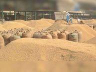 खानूडीह व गाेविंदपुर पैक्स में महीनेभर बाद भी शुरू नहीं हुई धान की खरीद, नहीं मिले जरूरी उपकरण; 15 केंद्र बनाए गए जिले में धान अधिप्राप्ति के लिए|धनबाद,Dhanbad - Dainik Bhaskar
