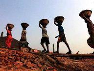 संबल योजना में जिले के 362 हितग्राहियों के खातों में 8 करोड़ रुपए ट्रांसफर|रतलाम,Ratlam - Dainik Bhaskar