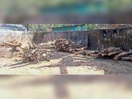 दाह संस्कार के लिए नगर पंचायत अब 11 रुपए में दिलाएगी लकड़ी|पखांजूर,Pankhanjur - Dainik Bhaskar