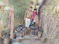 समुद्रपुरा गांव में फिर की एक हजार लीटर वाश नष्ट|शिवाड़,Shiwar - Dainik Bhaskar