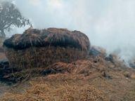 लटनपट्टी में किसान के खलिहान में आग से तीस हजार नेवारी जलकर नष्ट|जहानाबाद,Jehanabad - Dainik Bhaskar