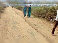 पैसे लेते अधिकारी की फोटो वायरल आरोप- सड़क रिपोर्ट मैनेज करने का|बांका,Banka - Dainik Bhaskar