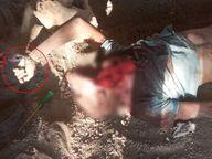 आंगन में सो रहे बुजुर्ग को तेंदुए ने शिकार बनाया, उनका एक हाथ जंजीर से बंधा मिला|गुजरात,Gujarat - Dainik Bhaskar