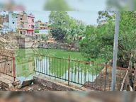 डेयरियों की गंदगी और मवेशी से लोग परेशान, गंदे पानी की भी होती है सप्लाई|सागर,Sagar - Dainik Bhaskar