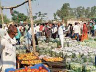 लाॅकडाउन हटते ही थोक मंडी में सब्जियों की बंपर आवक होशंगाबाद,Hoshangabad - Dainik Bhaskar