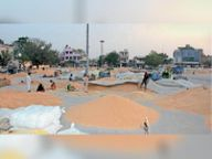 59,205 एमटी गेहूं पहुंची, 22,980 की खरीद|बठिंडा,Bathinda - Dainik Bhaskar
