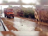30 किमी की रफ्तार से हवा के साथ बारिश; पेड़ गिरे, दिन-रात के पारे में 20 डिग्री का अंतर|पाली,Pali - Dainik Bhaskar