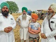 यूनियन उठा रही मोर्चे पर डटे किसानों की फसल काटने की जिम्मेदारी|बठिंडा,Bathinda - Dainik Bhaskar
