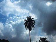 बादल छाए, 12 किमी प्रति घंटे की रफ्तार से चली हवा होशंगाबाद,Hoshangabad - Dainik Bhaskar