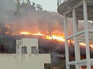 माता टेकरी की झाड़ियाें में लगी आग, हादसा टला देवास,Dewas - Dainik Bhaskar