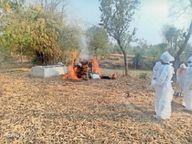 दावा; सत्तीगुड़ी में 30 स्वस्थ, बाकी का हो रहा इलाज, हकीकत होम आइसोलेशन में संक्रमित महिला की मौत|रायपुर,Raipur - Dainik Bhaskar