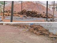 हिंदू सेवा मंडल के श्मशान में 8 चिता स्थल और बनाए जा रहे, 250 दाह संस्कार के लिए जुटाई गईं लकड़ियां|जोधपुर,Jodhpur - Dainik Bhaskar