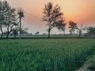 रात काे तापमान सामान्य से 4 डिग्री कम, आज बूंदाबांदी के आसार, राजस्थान के ऊपर बनेे साइक्लोनिक सर्कुलेशन के कारण मौसम बदला|हिसार,Hisar - Dainik Bhaskar