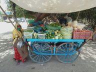 पाली में कॉलोनियों में घूमकर बेचने वालों ने बढ़ा दिए सब्जियों के दो गुना से तीन गुना दाम, मंडी में 20 किलो में बिक रही सब्जी ठेलों पर 50 सेे 60 रुपए तक में|पाली,Pali - Dainik Bhaskar