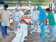 अबतक कोरोना से 484 लोगों की मौत; 24 घंटो में 706 नए केस, 17 की मौत|बठिंडा,Bathinda - Dainik Bhaskar