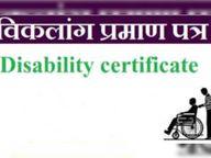 यूडीआईडी से अब ऑनलाइन जारी करेंगे दिव्यांग प्रमाण पत्र; प्रदेश में 2 लाख से ज्यादा केस पेंडिंग|सीकर,Sikar - Dainik Bhaskar