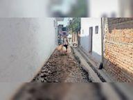 एक माह से सीसी सड़क उखड़ी लोगों को परेशानी|पथरिया,Pathriya - Dainik Bhaskar