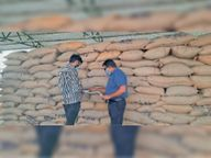 49 दिन में 92 हजार 856 किसानों से 6 लाख 77 हजार 554 टन गेहूं खरीदी उज्जैन,Ujjain - Dainik Bhaskar