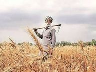 किसानों का अब 50% ब्याज माफ होगा, समझौता योजना 30 जून तक|डीग,Deeg - Dainik Bhaskar