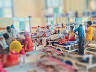 एंबुलेंस से वार्ड तक पहुंचने में ही लग रहे 45 से 60 मिनट, ओपीडी में मरीज का जब तक नंबर आया माैत हाे चुकी थी|अजमेर,Ajmer - Dainik Bhaskar