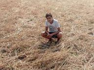 जिसने फसल बोई ही नहीं उनके खातों में 56 लाख रुपए डाले, भिंड में 4 गांव के 288 लोगों का नाम; दो पटवारियों पर कराई FIR|भिंड,Bhind - Money Bhaskar